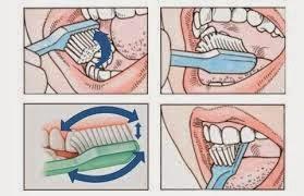 Gigi Sehat dan Kuat,5 Vitamin Ini Rahasianya